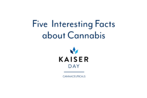 5 interesting facts about cannabis